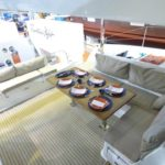 New Lucia 40 Fountaine Pajot - Elisir picture 07
